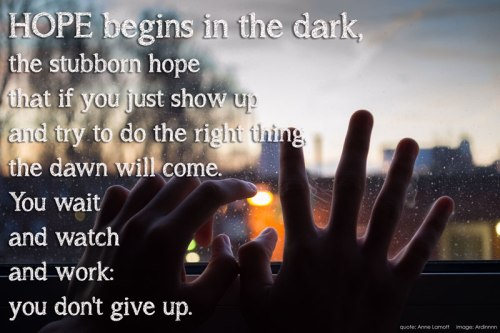 hope-begins-in-the-dark